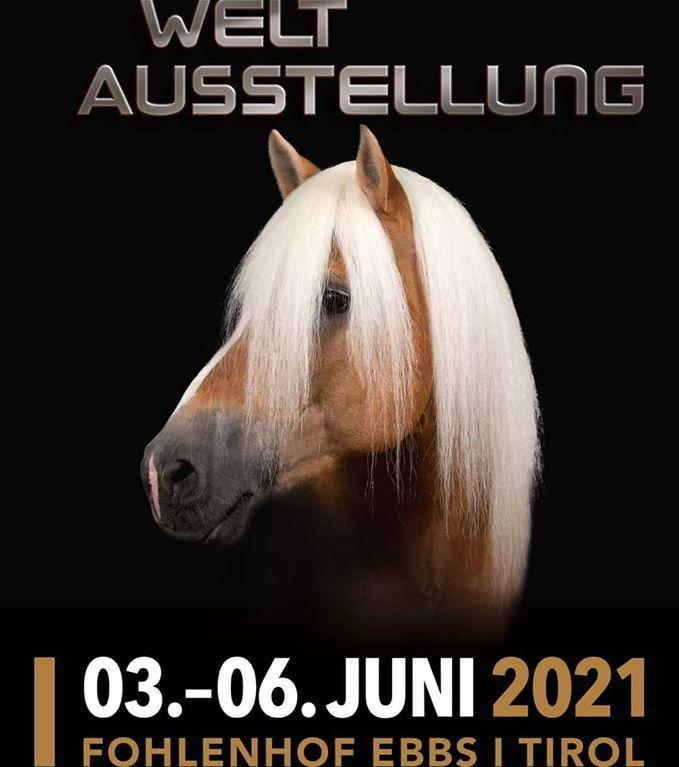 WT 2021